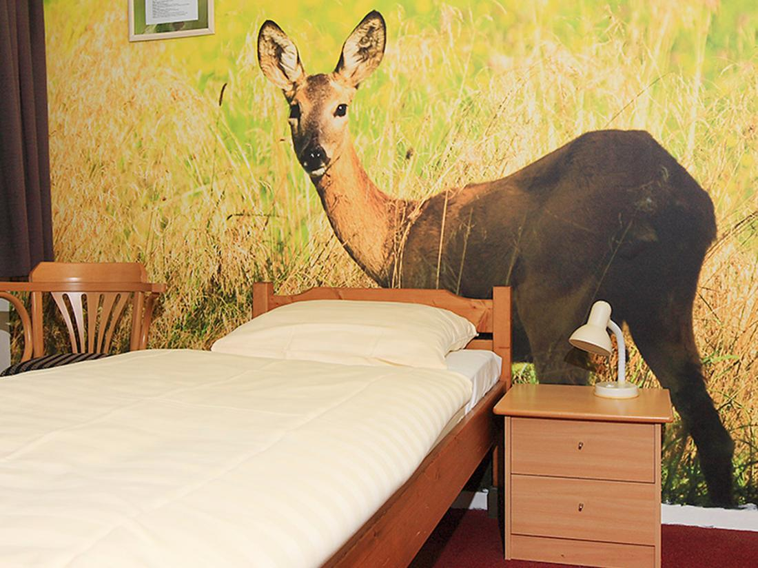 Hotel De Drift Drenthe Dwingeloo Hotelkamer