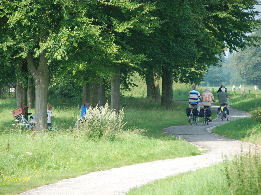 fietsen van hotel naar hotel gelderland
