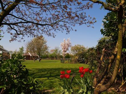 guesthouse de heide tuin
