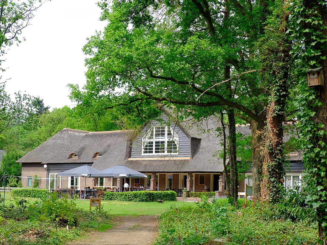 Landgoed Hotel Woodbroke Zicht vanaf bos
