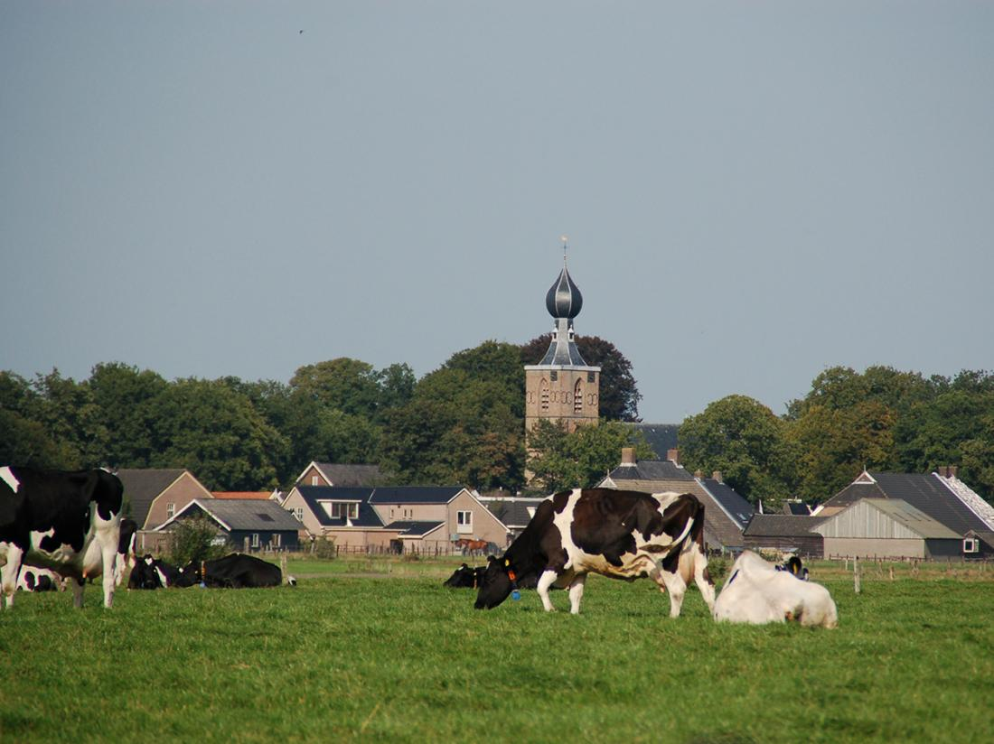 Weekendjeweg Dwingeloo Omgeving Weilanden