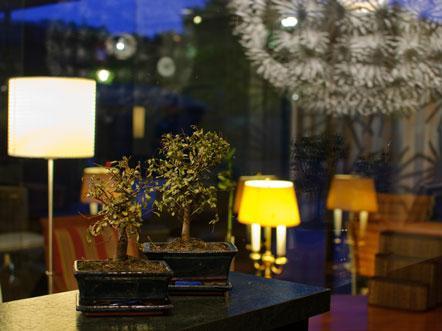dS Hotel Freizeitcenter Vreden Duitsland Receptie