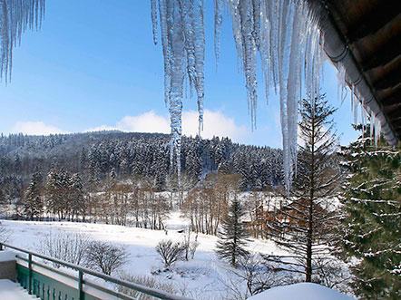 Hotelarrangement Willingen Sauerland winter