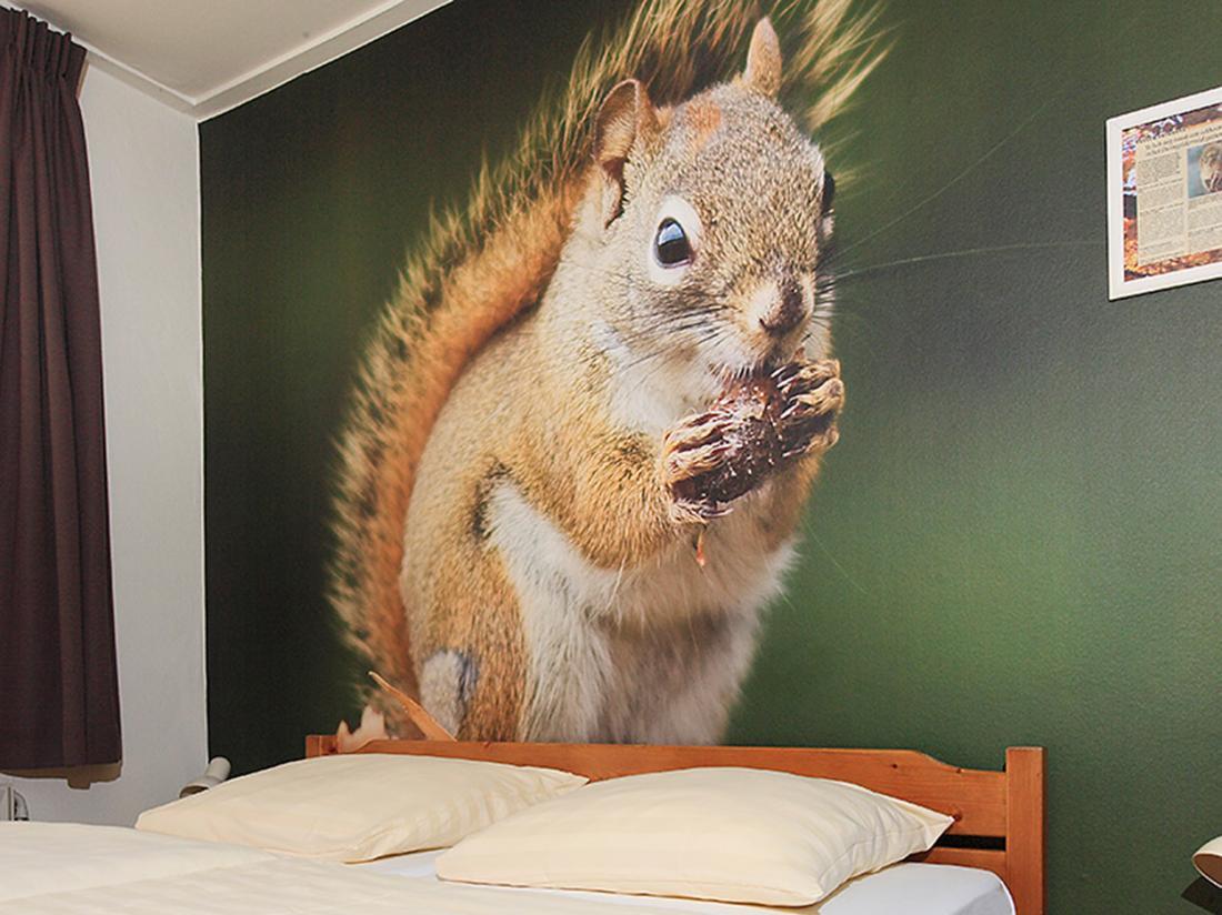 Hotel De Drift Drenthe Dwingeloo Comfortkamer